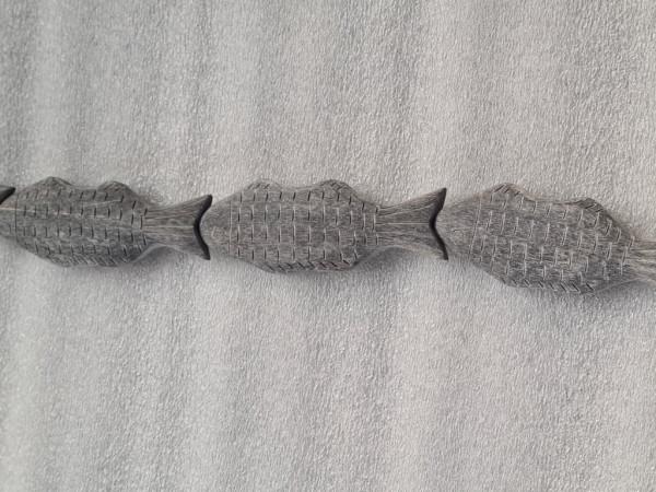 Brush Horn or Black Polish Horn Fish