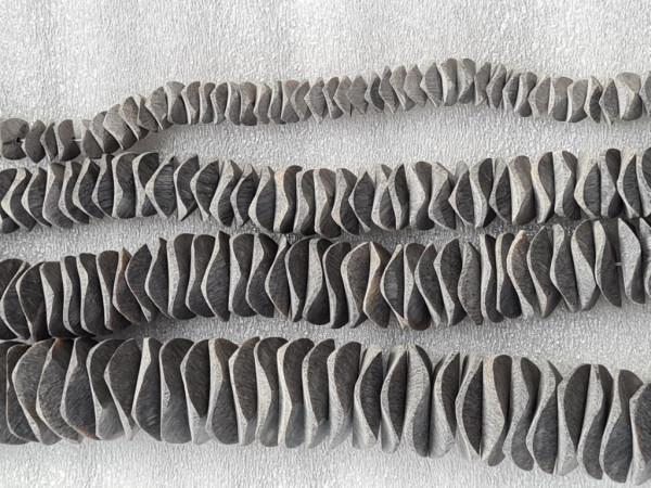 Brush Horn or Black Polish Horn Potato Chips Shape